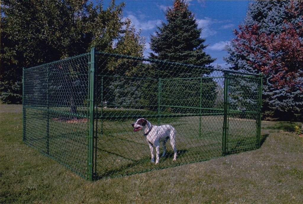 Best Outdoor Fence For Dogs