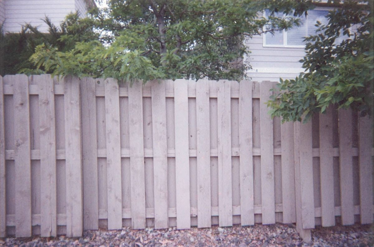 garden fence privacy